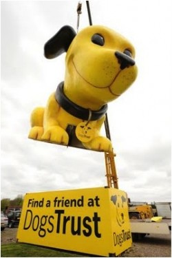 Giant Dogs Trust Dog