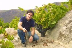 Rafael Palacios Valdeorras Albariño Producer